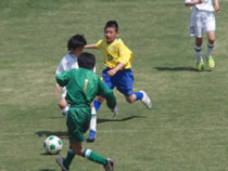 syousai-soccer-22-s
